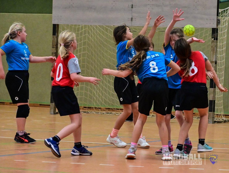 Laager SV 03 wJE - Rostocker HandballClub II